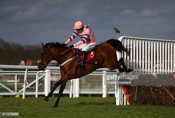 Noel Fehily clears the last hurdle on Jessber's Dream to win The Weatherbys GSB Jane Seymour Mares' Novices Hurdle Race at Sandown Park on February...
