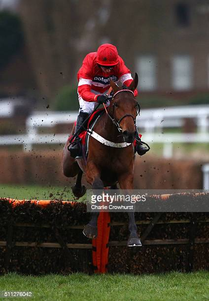 Noel Fehily clears the last on Protek Des Flos to win The David Lindon Co Novices' Hurdle Race at Sandown Park on February 19 2016 in Esher England