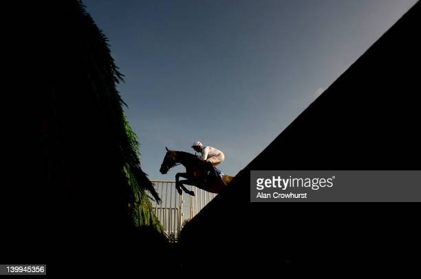 Noel Fehily riding Chariot Charger on their way to winning The toteexacta Novices' Steeple Chase at Fontwell racecourse on February 26 2012 in...