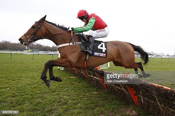 Noel Fehily riding Neon Wolf clear the last to win The Sky Bet Supreme Trail Rossington Main Novices Hurdle Race at Haydock Racecourse on January 21...