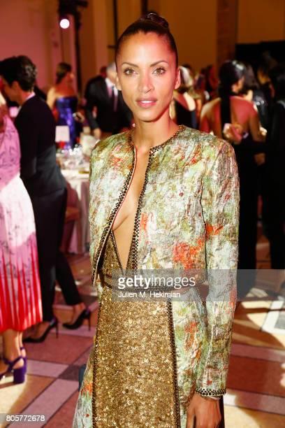Noemie Lenoir attends the amfAR Paris Dinner at Le Petit Palais on July 2 2017 in Paris France