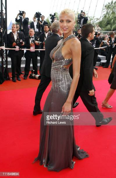 Noemie Lenoir during 2007 Cannes Film Festival 'Auf der Anderen Seite' Premiere at Palais des Festival in Cannes France