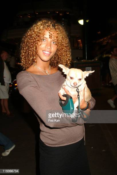 Noemie Lenoir with her dog Nikita during Noemie Lenoir and Chihuahua Nikita at St Tropez Harbor in Saint Tropez France