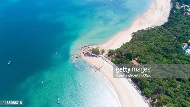 noirmoutier island in vendee, france - noirmoutier photos et images de collection