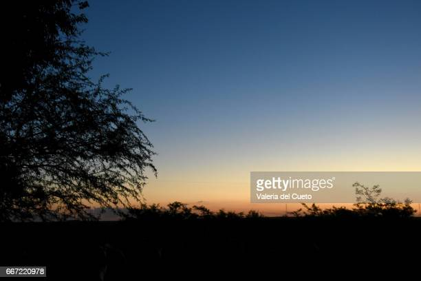 noite campeira chegando - o anoitecer stock pictures, royalty-free photos & images