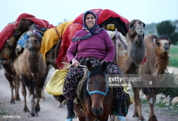 Nomad Hatice Ucar riding a horse, is seen with her cave flock as she and nomads are on their way to cooler uplands to Konya and Karaman districts at...
