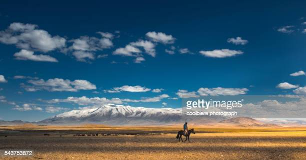 nomad riding horse at grass field with tsambagarav mountain background - independent mongolia stock pictures, royalty-free photos & images