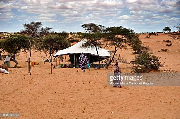Nomad tent in the Sahara desert