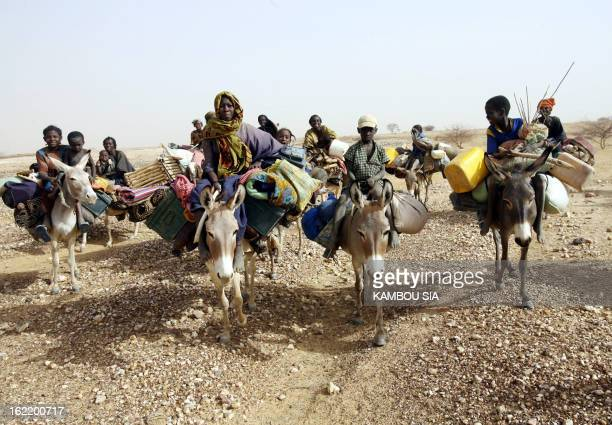 Nomadic desert people ride their donkeys 01 June 2006 near the Northern town of Gao 1500km from Bamako AFP PHOTO / KAMBOU SIA