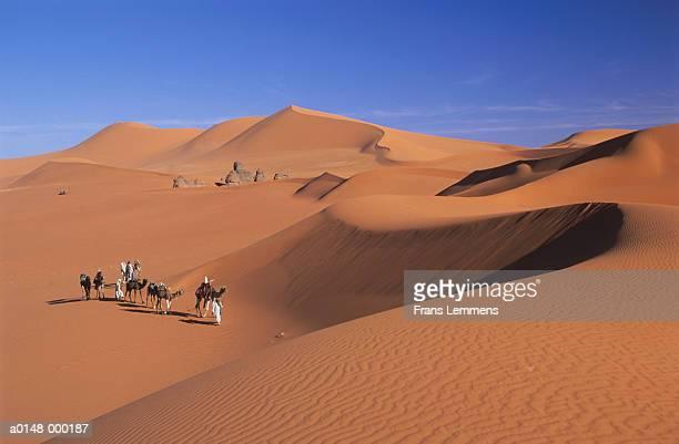 nomads and camel train - argélia - fotografias e filmes do acervo