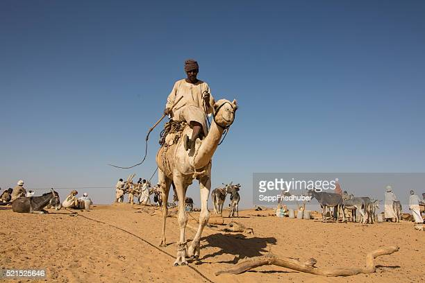 Nomads at a deep  fountain  Sudan