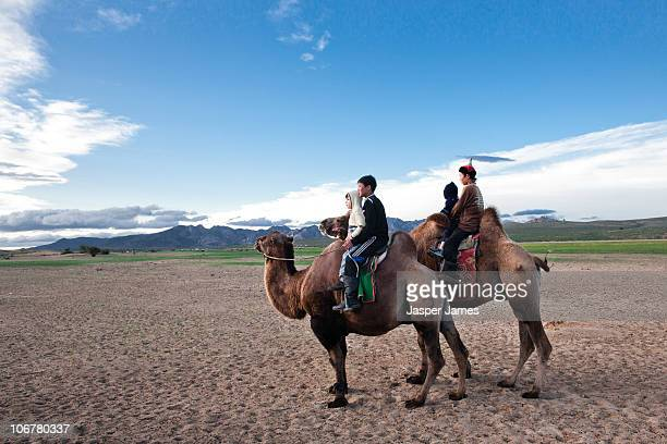 Nomads on camels in Outer Mongolia