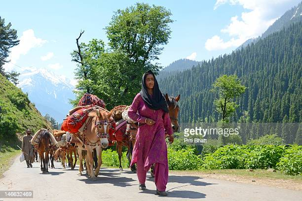 nomads - kashmir valley stock pictures, royalty-free photos & images