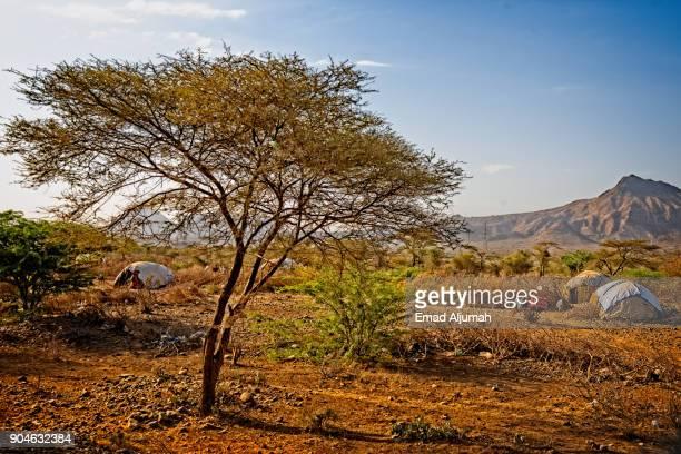 Nomads tents near Awash, Afar Triangle, Ethiopia - December 7, 2017