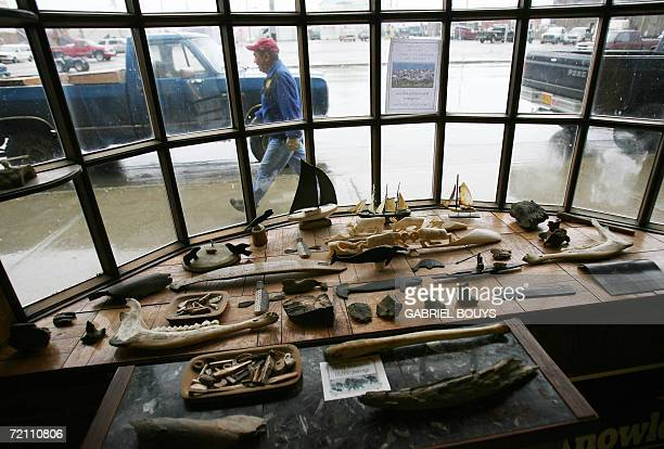 A shop sells Eskimo art in Nome Alaska 27 September 2006 The discovery of gold by Norwegian Jafet Lindeberg and Swedes Erik Lindblom and John...