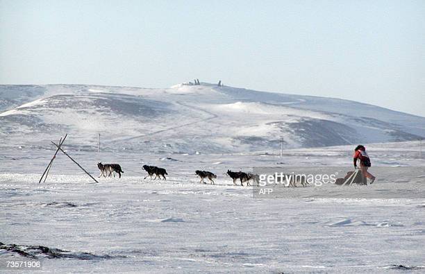 On his way to victory 2007 Iditarod champ Lance Mackey mushed towards Nome Alaska 13 March 2007 Mackey a cancer survivor nobody thought could win...
