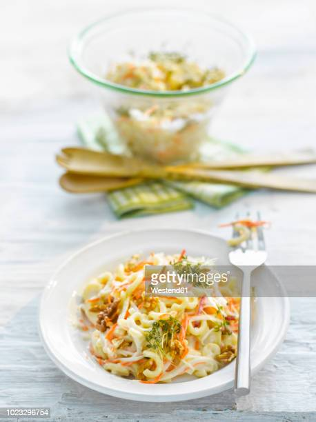 Noodle salad with carrot, walnut and cress on plate