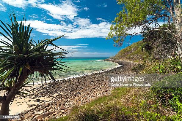 Noosa National Park | Queensland | Australia