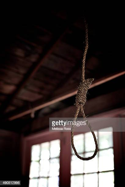 Noose hanging from a darkened ceiling