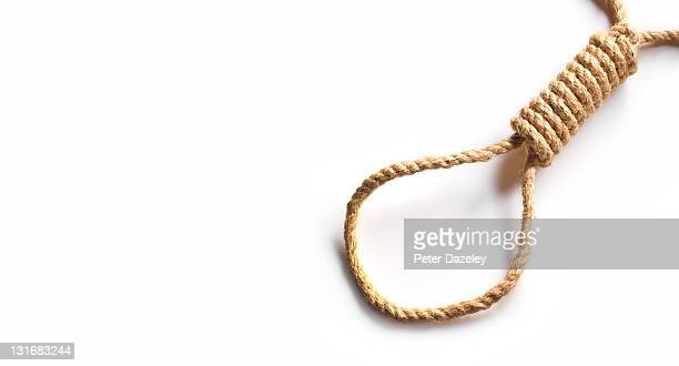 noose on white background with copy space - lynching stock photos and pictures