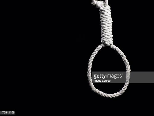 noose - suicide stock photos and pictures