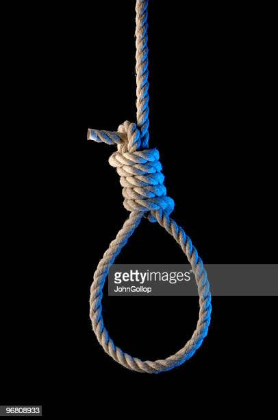 noose - hanging stock pictures, royalty-free photos & images