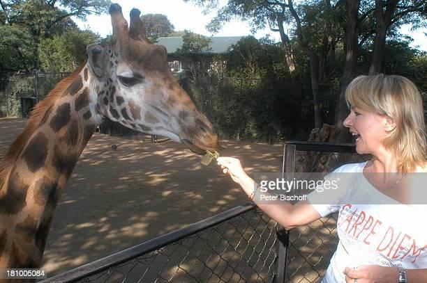 """Nora von Collande, Zoobesuch, Hamburg, , """"Hagenbecks Tierpark"""", Schauspielerin, Giraffe, füttern, Gehege, Tier, Promis, Prominente, Prominenter,"""