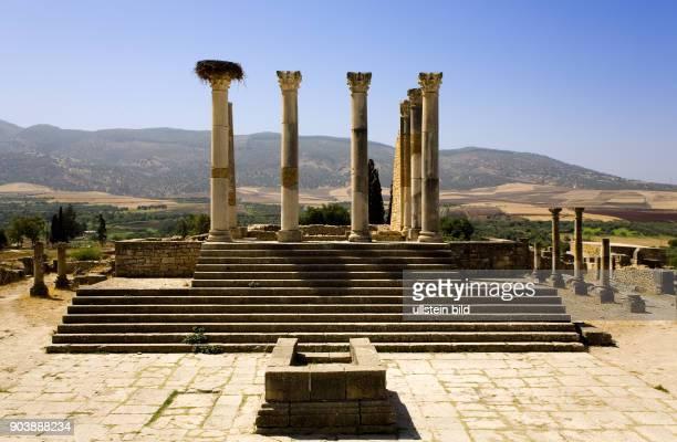 Nordafrika, MAR, Marokko, Volubilis. Eingebettet in eine weite, huegelige Landschaft, erstrecken sich die Ruinen des antiken Volubilis am Fuss des...