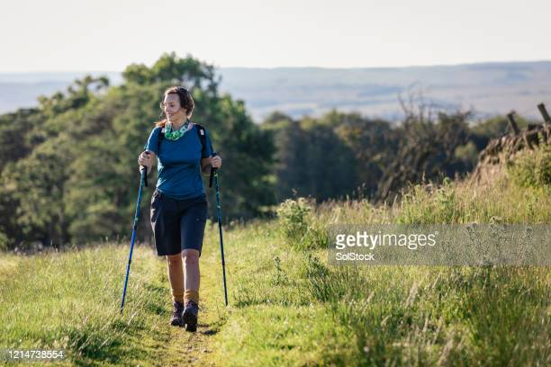 nordic walking on my own - hiking pole stock pictures, royalty-free photos & images