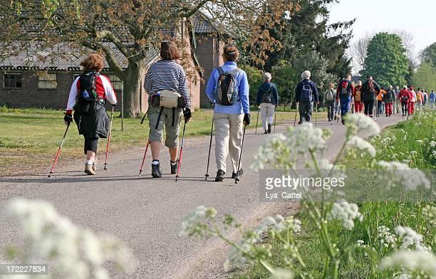 Nordic-walking-# 8