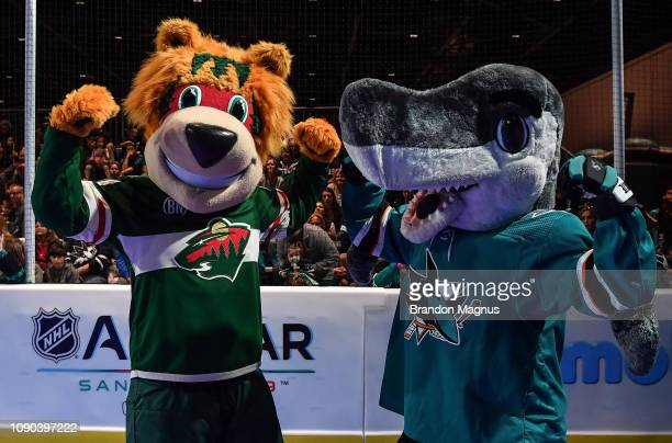 Nordy of the Minnesota Wild and SJ Shark of the San Jose Sharks pose for a photo during the NHL Mascot Showdown at San Jose McEnery Convention Center...