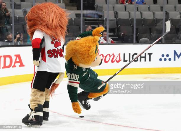 Nordy of the Minnesota Wild and Spartacat of the Ottawa Senators participate in the the 2019 NHL AllStar Mascot Showdown at the SAP Center on January...