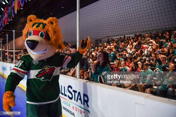 Nordy of the Minnesota Wild gets fans excited during the NHL Mascot Showdown at San Jose McEnery Convention Center on January 27 2019 in San Jose...