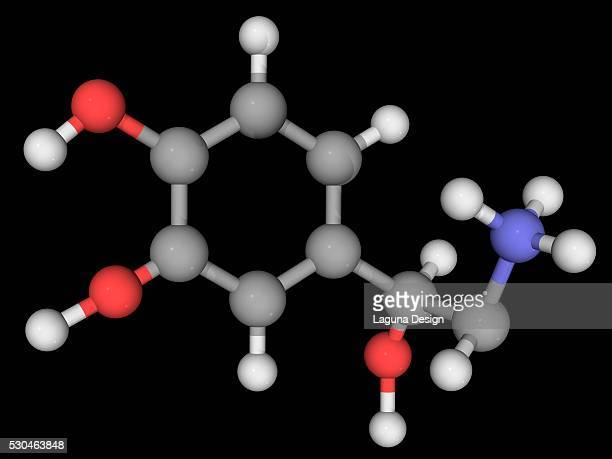 Norepinephrine molecule