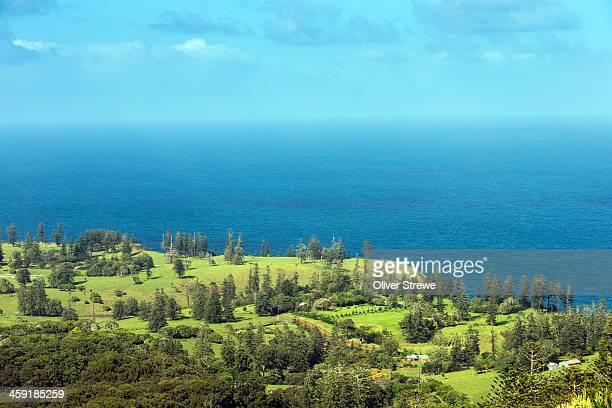 Norfolk Island Farm