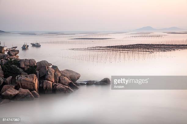 nori cultured in the sea in Xiapu city, Fujian Province'n