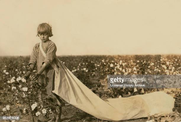 Norma Lawrence, 10 years old, Full-Length Portrait, Cotton Picker, Picks 100 to 150 pounds of Cotton per day, Comanche County, Oklahoma, USA, Lewis...