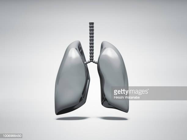 normal metal lung - lung stock pictures, royalty-free photos & images