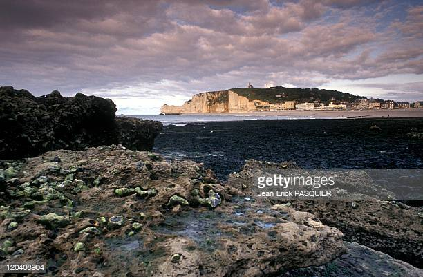 Normandy Pays De Caux In Etretat France In 1983 The beach in EtretatThe mysteries of the sea did discover at low tideEtretat to the beach...
