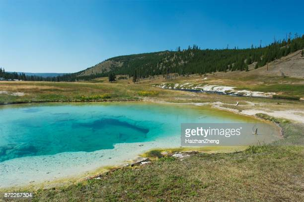 norris basin geysers - emerald green stock pictures, royalty-free photos & images