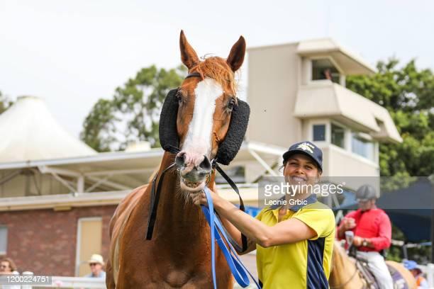 North Afrika after winning the Mirboo North Hotel BM58 Handicap at Stony Creek Racecourse on February 12, 2020 in Stony Creek, Australia.