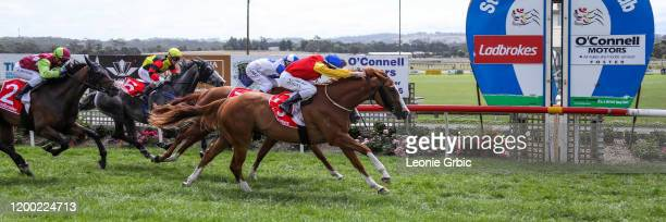North Afrika ridden by Dylan Dunn wins the Mirboo North Hotel BM58 Handicap at Stony Creek Racecourse on February 12, 2020 in Stony Creek, Australia.
