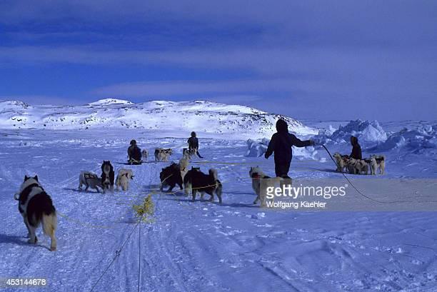 North America, Canada, Nwt, Baffin Island, Near Iqaluit, Meeting Of Dog Teams.