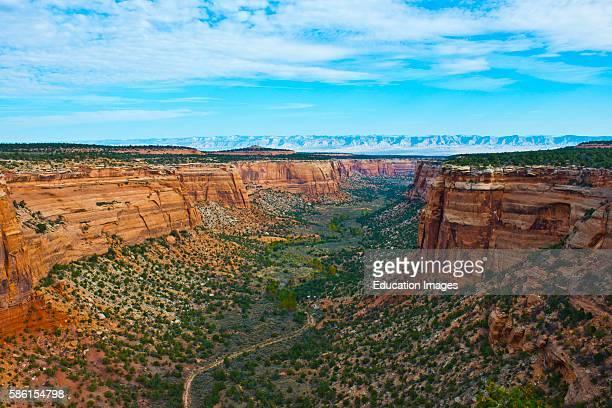 North America USA Colorado Fruita Grand Junction Vistas along Rim Rock Drive Colorado National Monument Ute Canyon