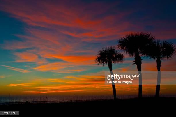 North America, USA, Florida, Sarasota, Crescent Beach, Siesta Key, Vermillion Sunset and Palm Trees.