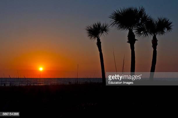 North America USA Florida Sarasota Sunset Crescent Beach Siesta Key Sunset