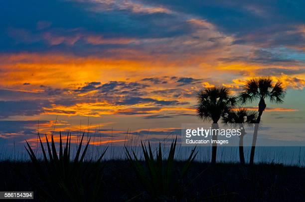 North America, USA, Florida, Sarasota, Sunset, Crescent Beach Siesta Key Sunset.