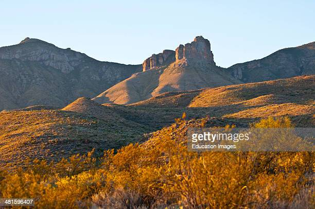 North America, USA, Texas, Big Bend National Park, Chisos Mountains in evening light from Chisos Basin Road.