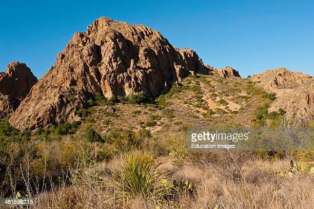 North America, USA, Texas, Big Bend National Park, Chisos Mountains.