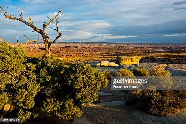 North America USA Utah Emery Early Castle Valley Historic Early Mormon Settlement